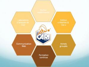 cari-actions